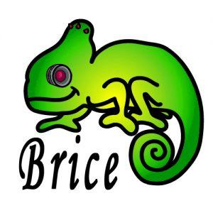 Chameleon-brice