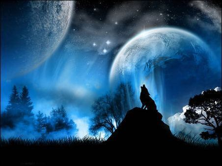 background-screen-Moon-Wolf