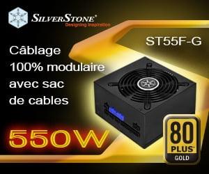 ST55F-G-300x250