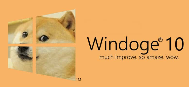 tracking-windows-10-dog