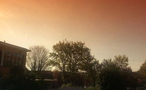 paysage avec degradé orange