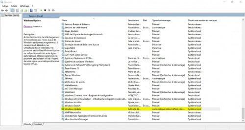 services windows update